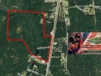 166 Ac Great Timberland Tract Near : Jasper : Jasper County : Texas