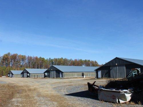 Four House Broiler Farm : Centre : Cherokee County : Alabama