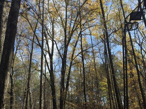 29-041 Milam Road South : Wetumpka : Elmore County : Alabama