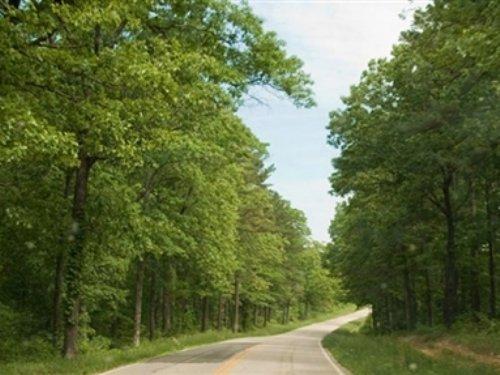 25 Acre Blue Sky Ranch : Winona : Shannon County : Missouri