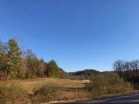 113.59 +/- Acres, Bank Owned : Fairmount : Gordon County : Georgia