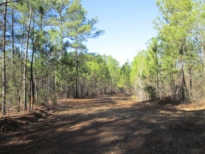 forest ranch mature singles 5000 summer place road is a real estate single family property that is for sale by berkshire hathaway homeservices drysdale properties on wwwbhhsdrysdalecom the mls# is sn18126690 and it.