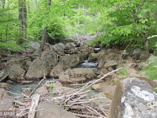 271 Acres In Mount Storm : Mount Storm : Grant County : West Virginia