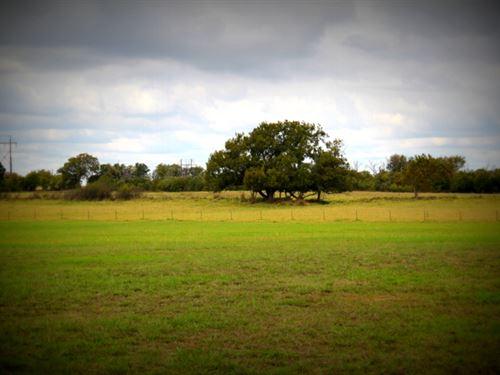 Prime Acreage With Pond : Stephenville : Erath County : Texas