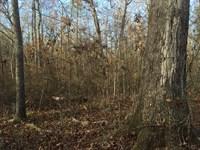 Accessible Recreation Land : Talladega : Talladega County : Alabama