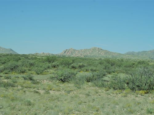 Arizona Best Buy - 600 Acres : Dragoon : Cochise County : Arizona