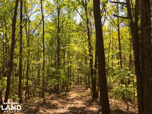 Liberty Hill Recreational Hardwoods : Kershaw : South Carolina