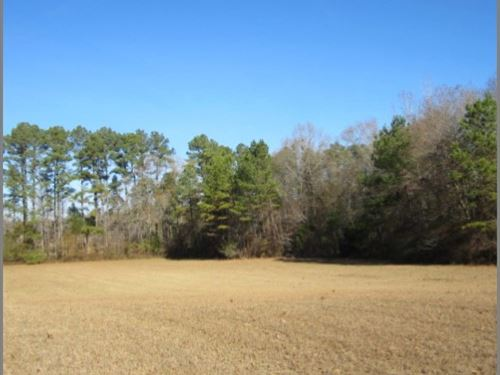 60 Acres In Lafayette County : Paris : Lafayette County : Mississippi
