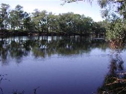 24.30 Ac. On Suwannee River : O'brien : Suwannee County : Florida