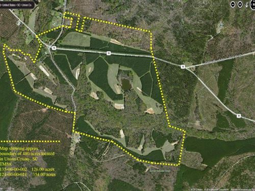 480 Acre, Padgett Creek Reserve : Union : South Carolina