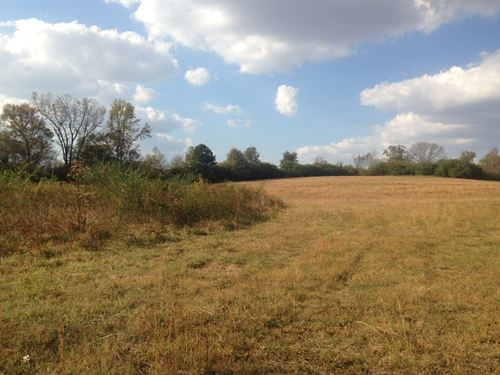 39.9 Acres, Wooded & Open, Creek : Cullman : Alabama