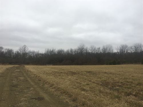 31.34 Acre Building Site : Cumberland : Guernsey County : Ohio