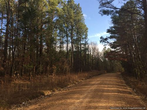 Goodman, Ms Hunting/Timberland : Goodman : Holmes County : Mississippi