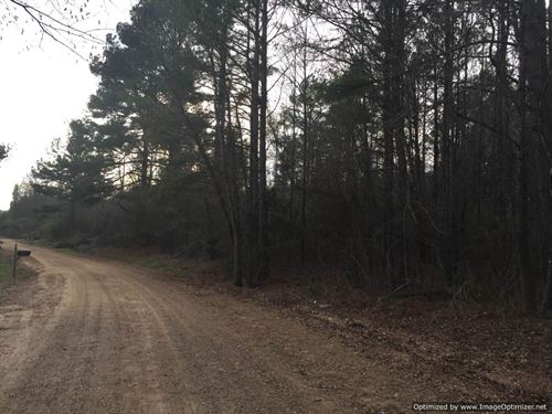 52 Ac Hunting/Timber Investment : Goodman : Holmes County : Mississippi