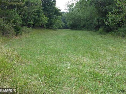 Pasture, Woods, Stream : Purgitsville : Hampshire County : West Virginia