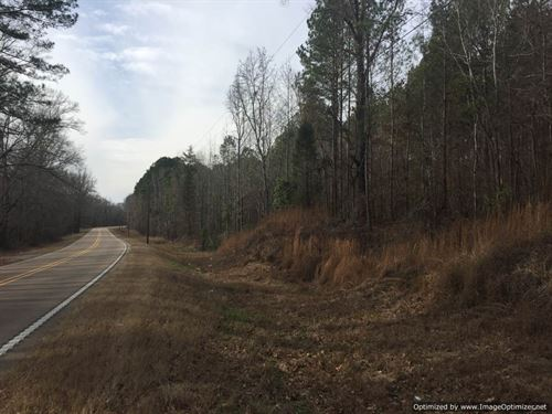 397 Ac Hunting/Timber Investment : Lexington : Holmes County : Mississippi