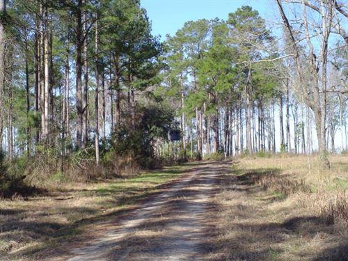 Ravenwood Plantation : Charleston : Dorchester County : South Carolina
