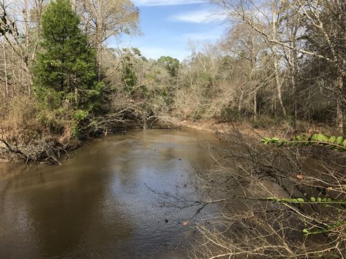River Bend Tract : Headland : Dale County : Alabama