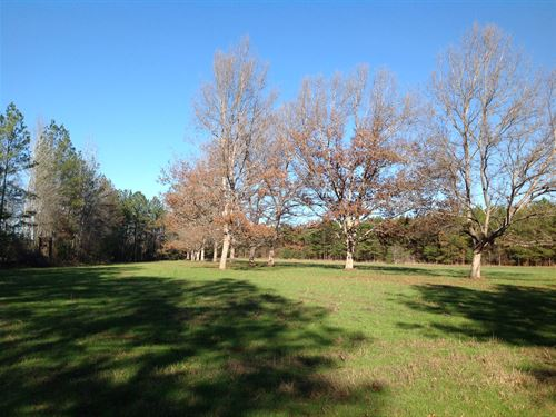 640 Acres +/- In Perry County : Selma : Perry County : Alabama