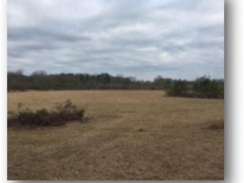 64 Acres In Jefferson Davis County : Prentiss : Jefferson Davis County : Mississippi