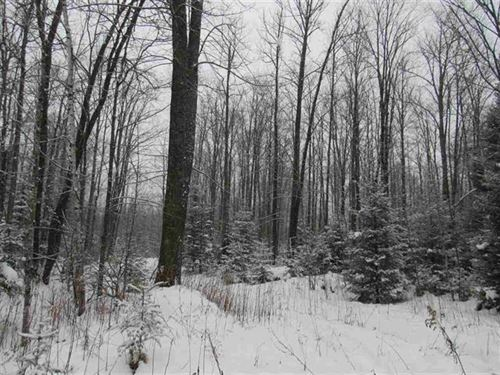 280 Acres North Ln 1099211 : Sagola : Dickinson County : Michigan