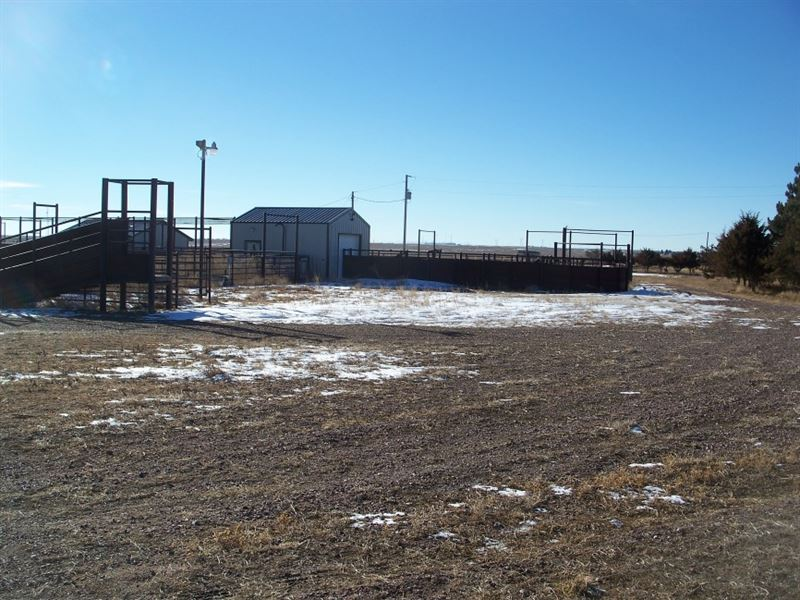 Sidney Grass, Dryland, And Cattle F : Sidney : Cheyenne County : Nebraska