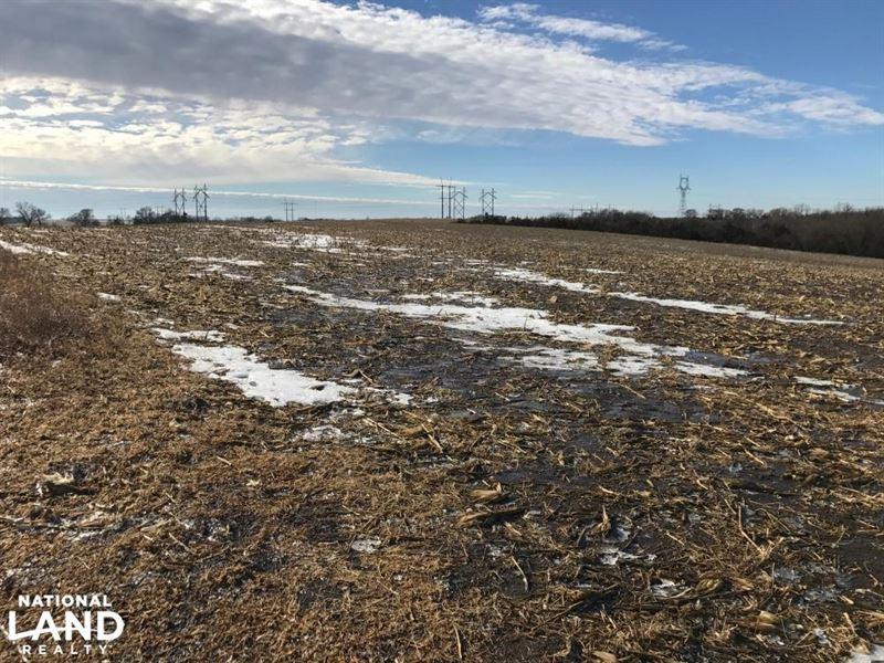 Lancaster County 130 Acre Farm : Hallam : Lancaster County : Nebraska