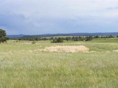 Remington Road : Custer : South Dakota