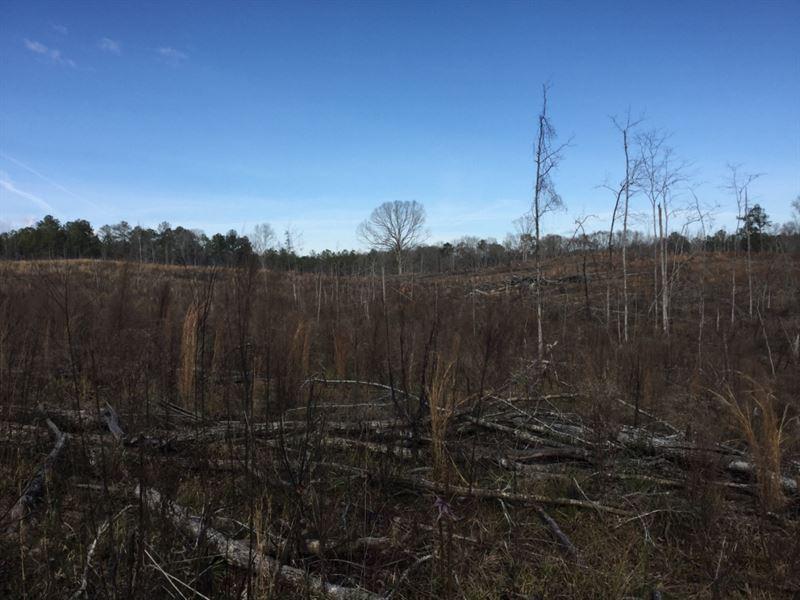 Fort Davis Tract : Fort Davis : Macon County : Alabama