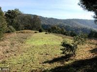 Own A Mountain Farm : Baker : Hardy County : West Virginia