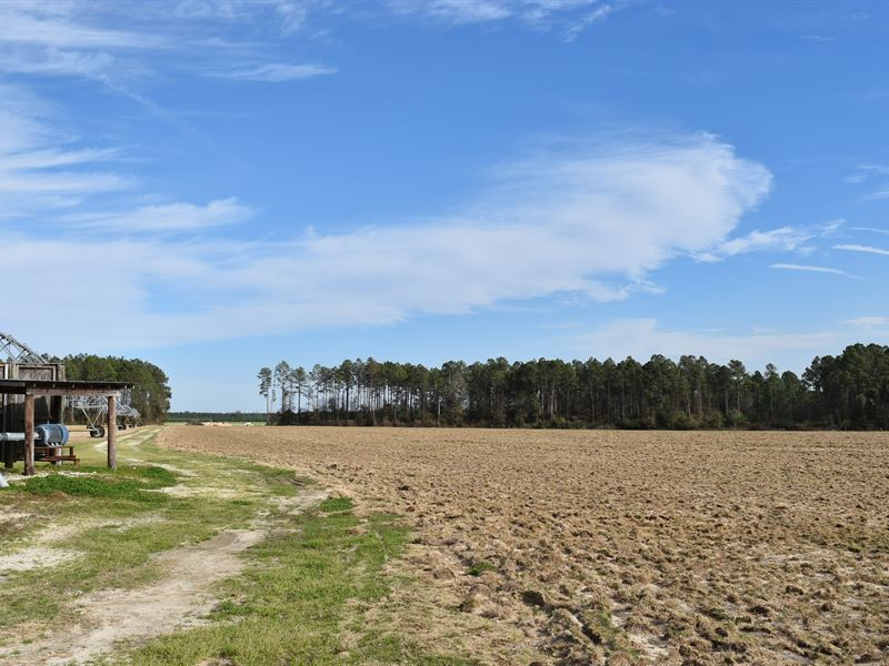 Great Small Irrigated Farm : Lakeland : Lanier County : Georgia