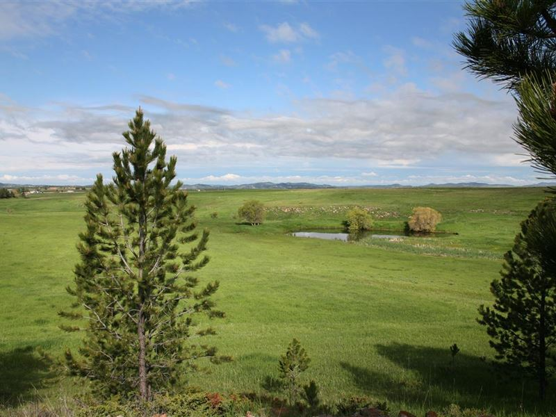 Bar T Bar Acreage : Four Corners : Weston County : Wyoming