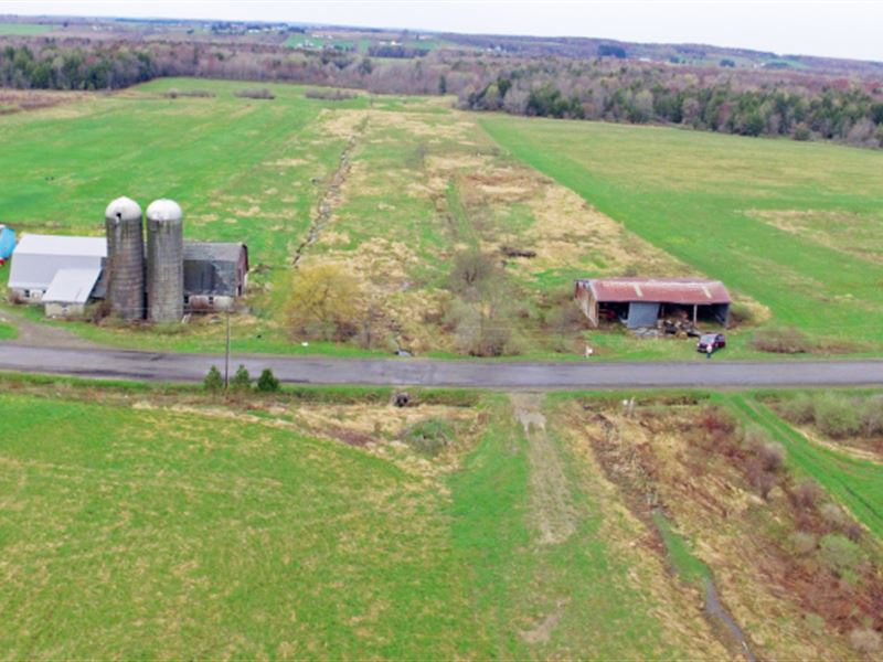 62 Acres Farmland Barn Arcade Ny : Arcade : Wyoming County : New York