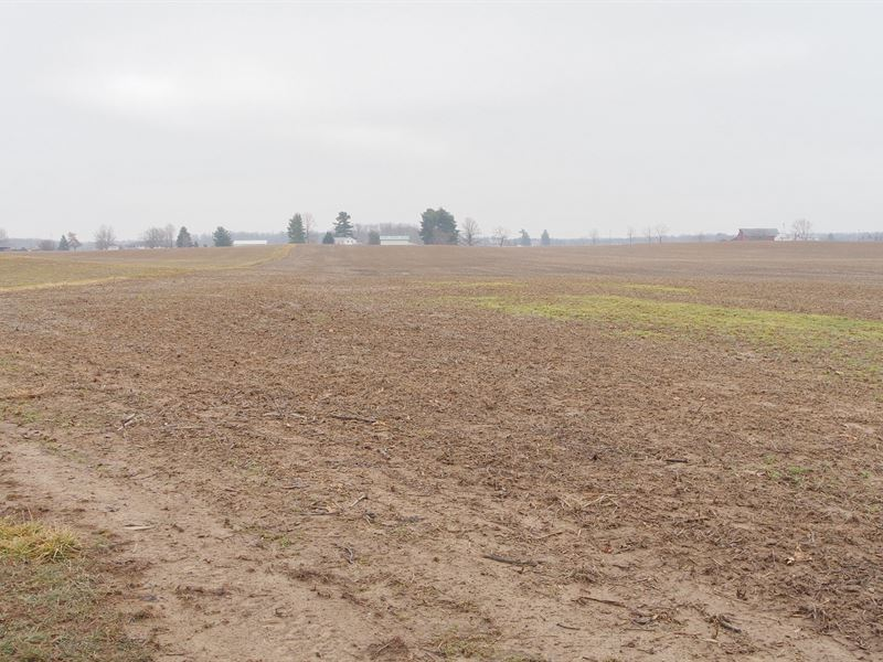 Jeffrey Rd - 90 Acres : Homerville : Medina County : Ohio