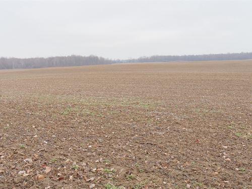 Jeffrey Rd - 24 Acres : Homerville : Medina County : Ohio
