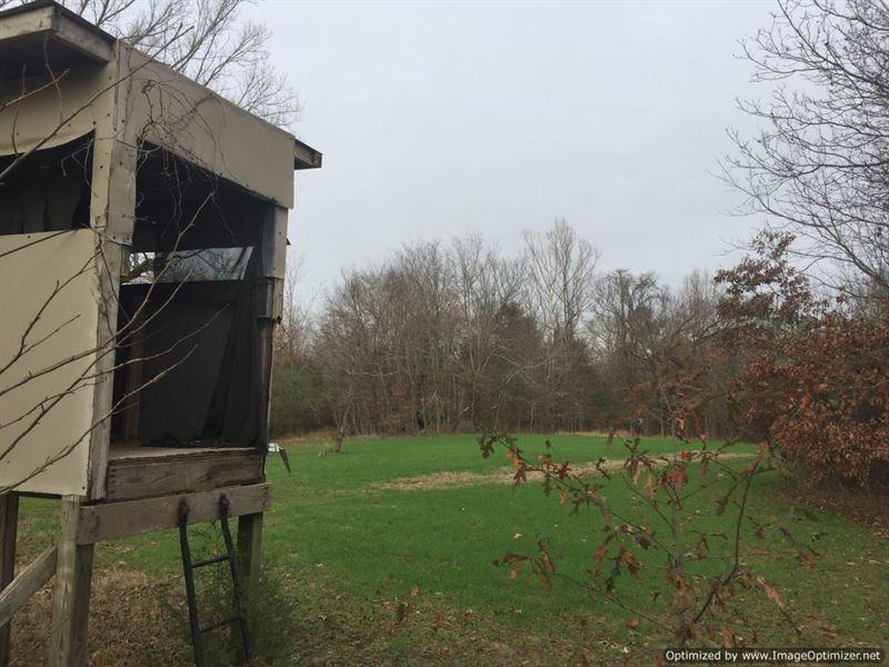 197+/- Ac Hunting/Timberland : Charleston : Tallahatchie County : Mississippi