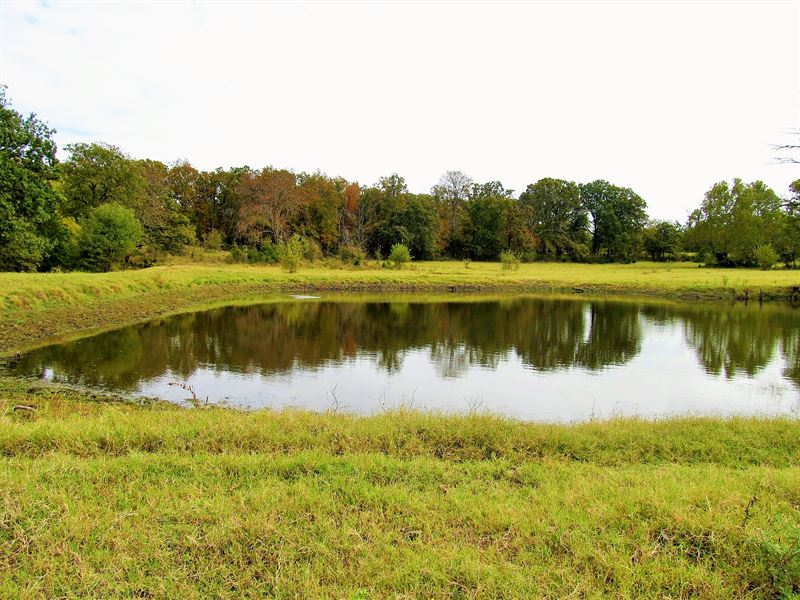 Beautiful 148 Acres & Custom Home : Stonewall : Johnston County : Oklahoma