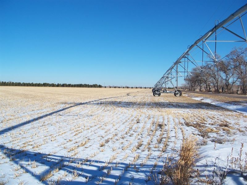 Sidney Irrigated Farm : Sidney : Cheyenne County : Nebraska