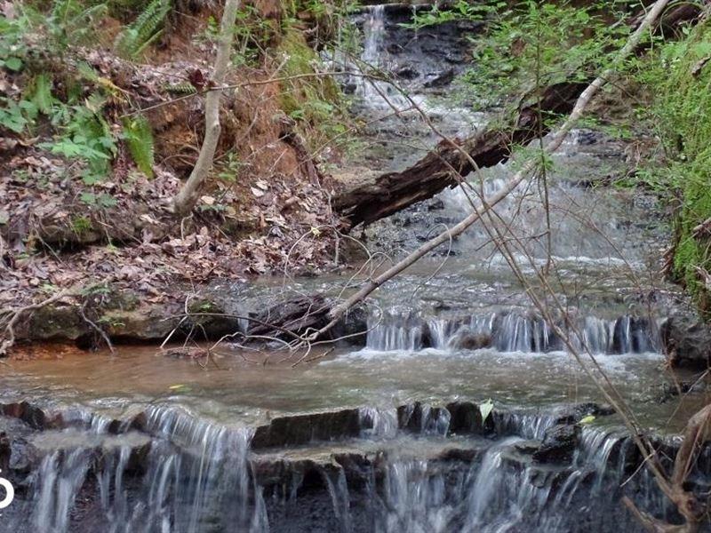 The White Oak Ridge Hunting Preserv : Meridian : Lauderdale County : Mississippi