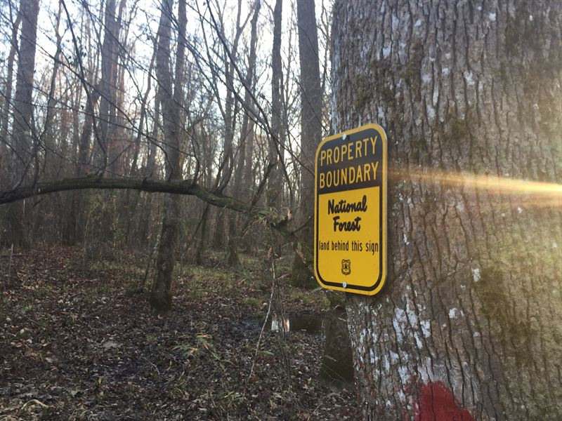 108+/- Ac Adjoins National Forest : Roxie : Franklin County : Mississippi