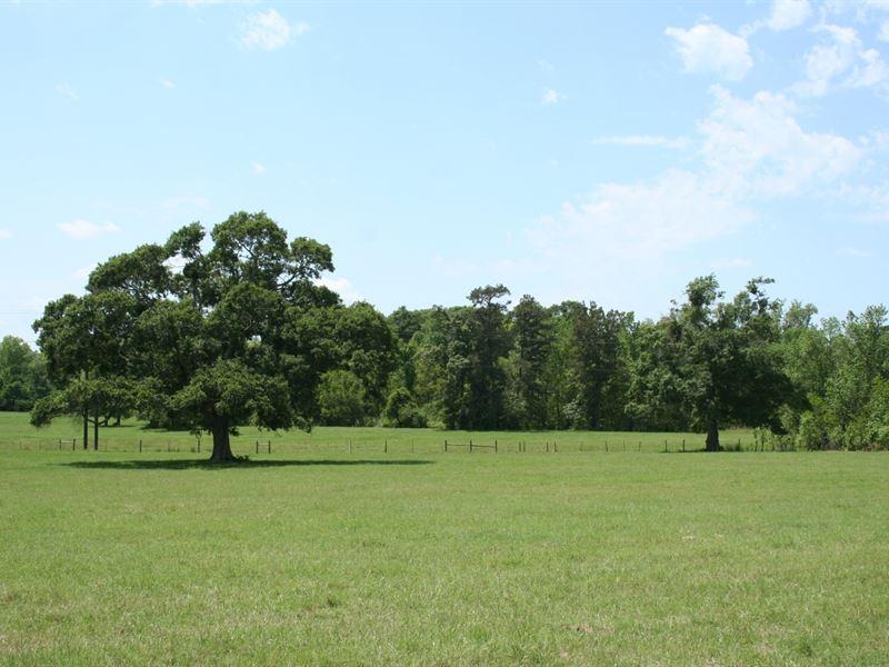 Fife 165 : Montgomery : Montgomery County : Texas