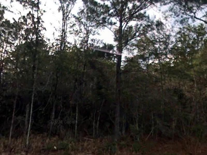 Madison County, Florida $165,000 : Greenville : Madison County : Florida