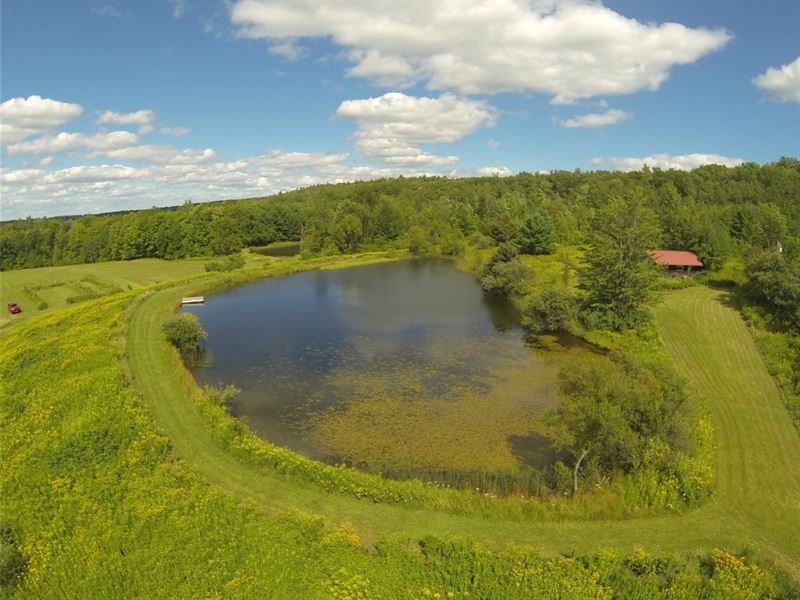 84 Acres Furnished Home Angelica Ny : Granger : Allegany County : New York