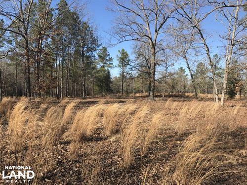 Camden Equestrian Farm Land Acreage : Camden : Kershaw County : South Carolina