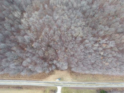 Johnson Hill Rd - 55 Acres : Newcomerstown : Tuscarawas County : Ohio