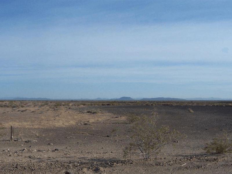 Vacant 60 Acres For Sale : Dateland : Yuma County : Arizona