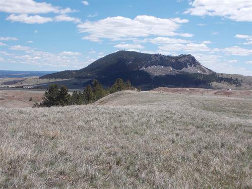 Beautiful 41+ Acres : Sunance : Crook County : Wyoming