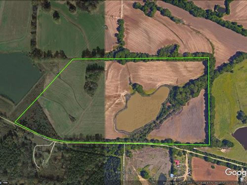 59.9+/- Ac Secluded Property : Canton : Madison County : Mississippi