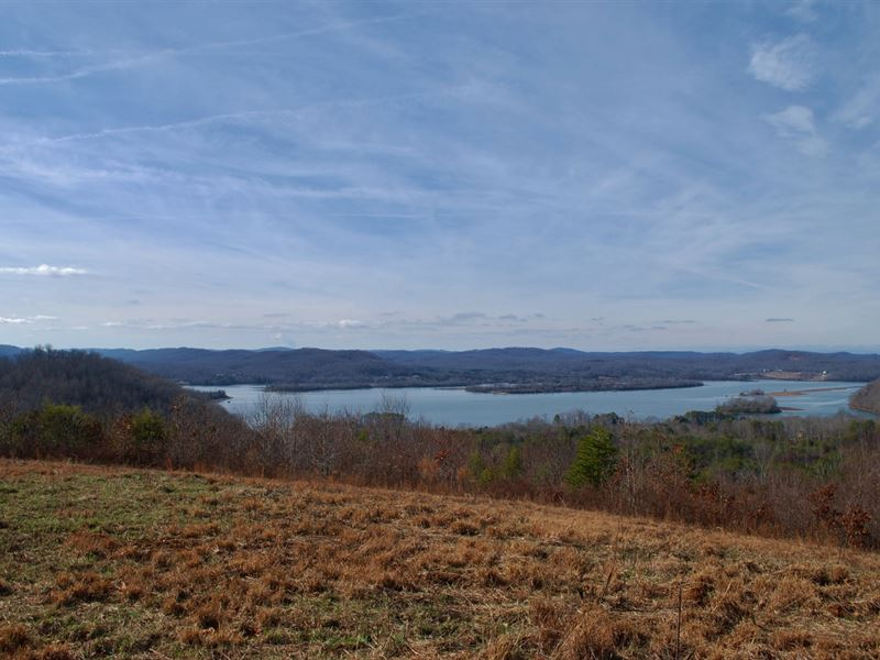 Watts Bar Lakefront Land Auction : Kingston : Roane County : Tennessee