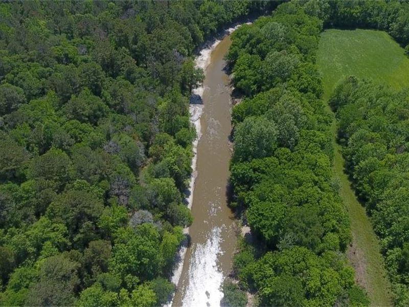 Noxubee River Tree Farm : Geiger : Sumter County : Alabama